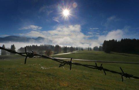 Nebel lichtet sich über dem Forggensee in Bayern